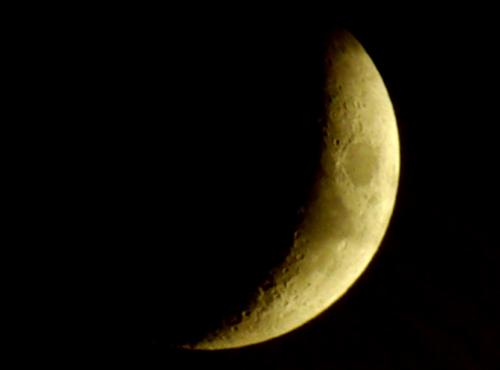 lune-croissant2009